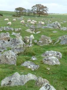 Sarsen Stones 009